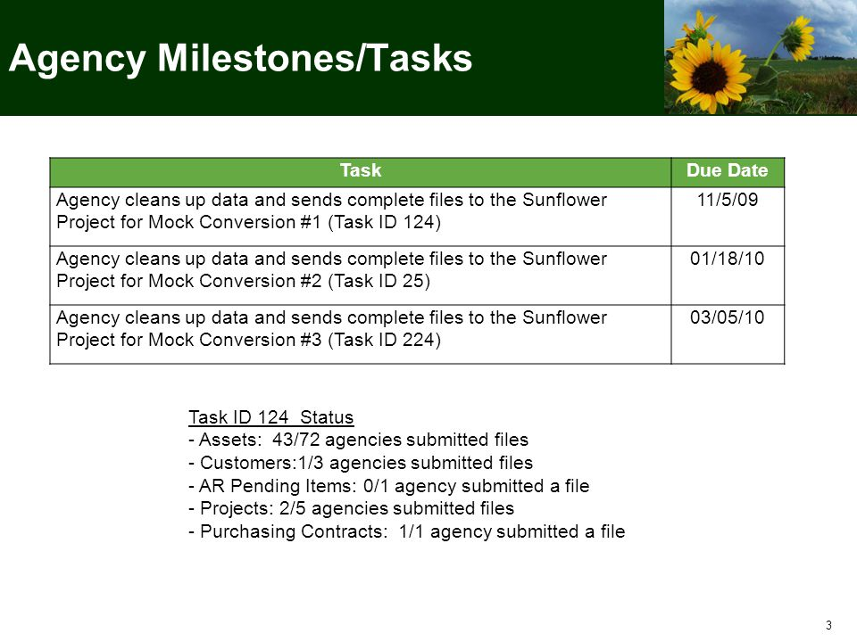 3 TaskDue Date Agency cleans up data and sends complete files to the Sunflower Project for Mock Conversion #1 (Task ID 124) 11/5/09 Agency cleans up data and sends complete files to the Sunflower Project for Mock Conversion #2 (Task ID 25) 01/18/10 Agency cleans up data and sends complete files to the Sunflower Project for Mock Conversion #3 (Task ID 224) 03/05/10 Agency Milestones/Tasks Task ID 124 Status - Assets: 43/72 agencies submitted files - Customers:1/3 agencies submitted files - AR Pending Items: 0/1 agency submitted a file - Projects: 2/5 agencies submitted files - Purchasing Contracts: 1/1 agency submitted a file