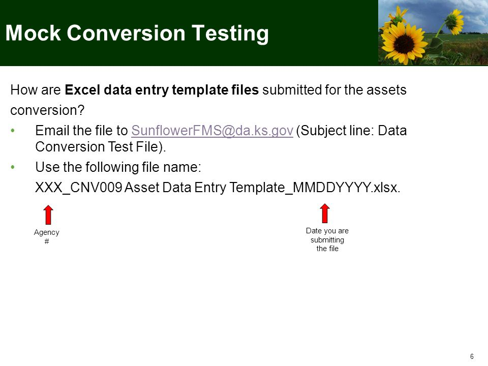 7 Each mock conversion file (for Mocks 1, 2, and 3) should be the complete set of data that you plan to convert.