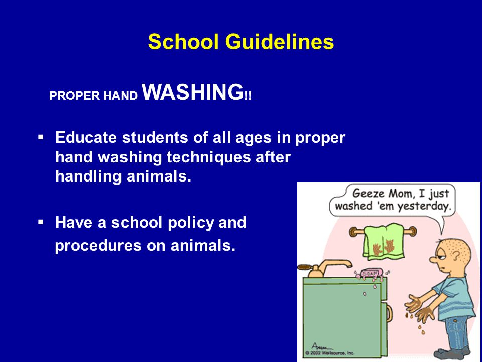 School Guidelines  Educate students of all ages in proper hand washing techniques after handling animals.  Have a school policy and procedures on an
