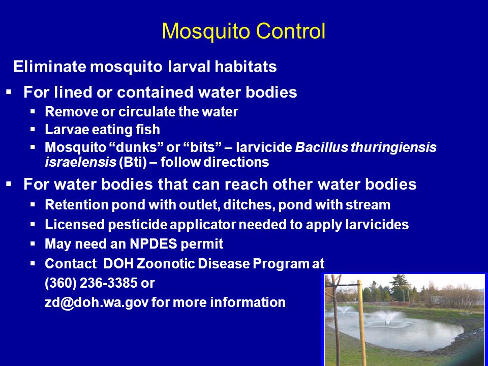 "Eliminate mosquito larval habitats  For lined or contained water bodies  Remove or circulate the water  Larvae eating fish  Mosquito ""dunks"" or ""b"