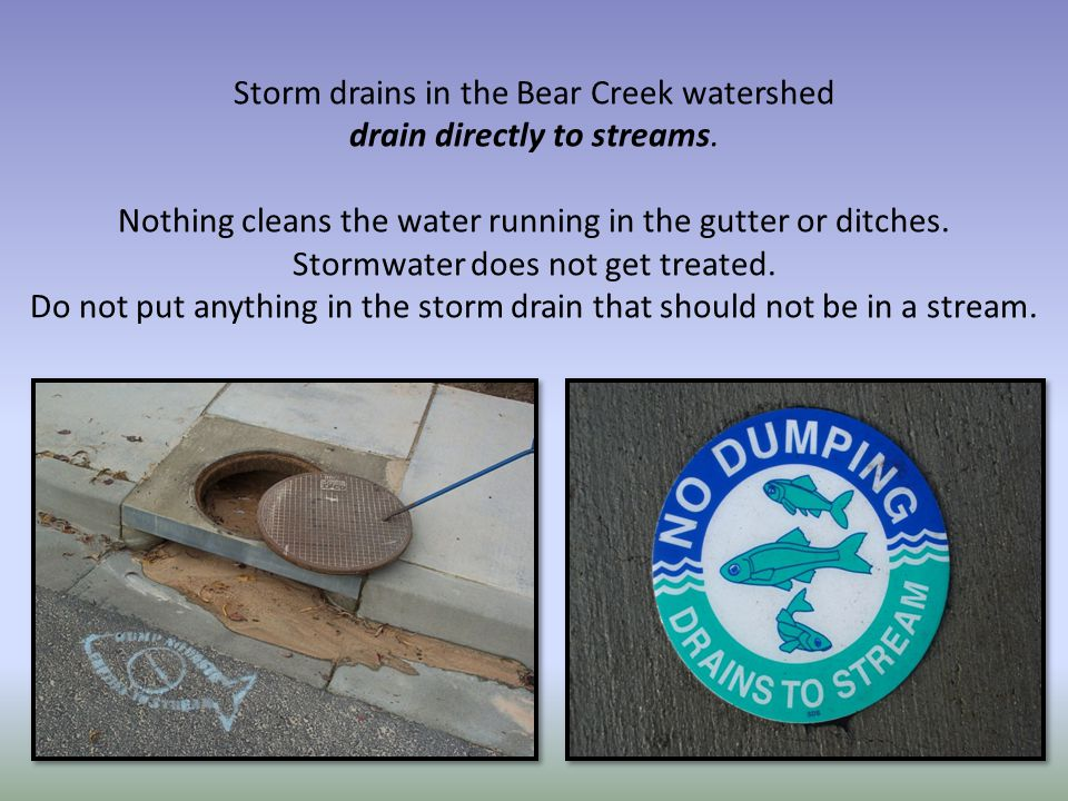 Storm drains in the Bear Creek watershed drain directly to streams.