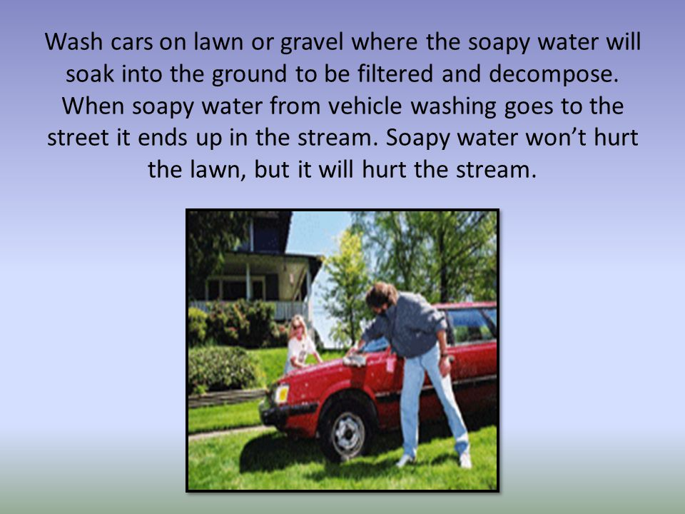 Wash cars on lawn or gravel where the soapy water will soak into the ground to be filtered and decompose.