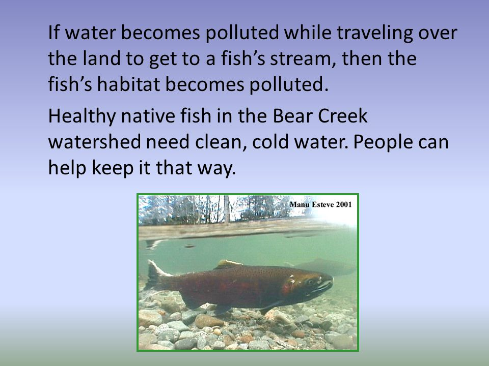 If water becomes polluted while traveling over the land to get to a fish's stream, then the fish's habitat becomes polluted.