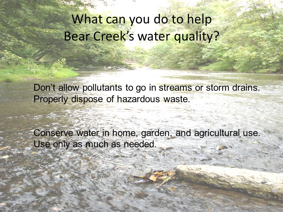 What can you do to help Bear Creek's water quality.