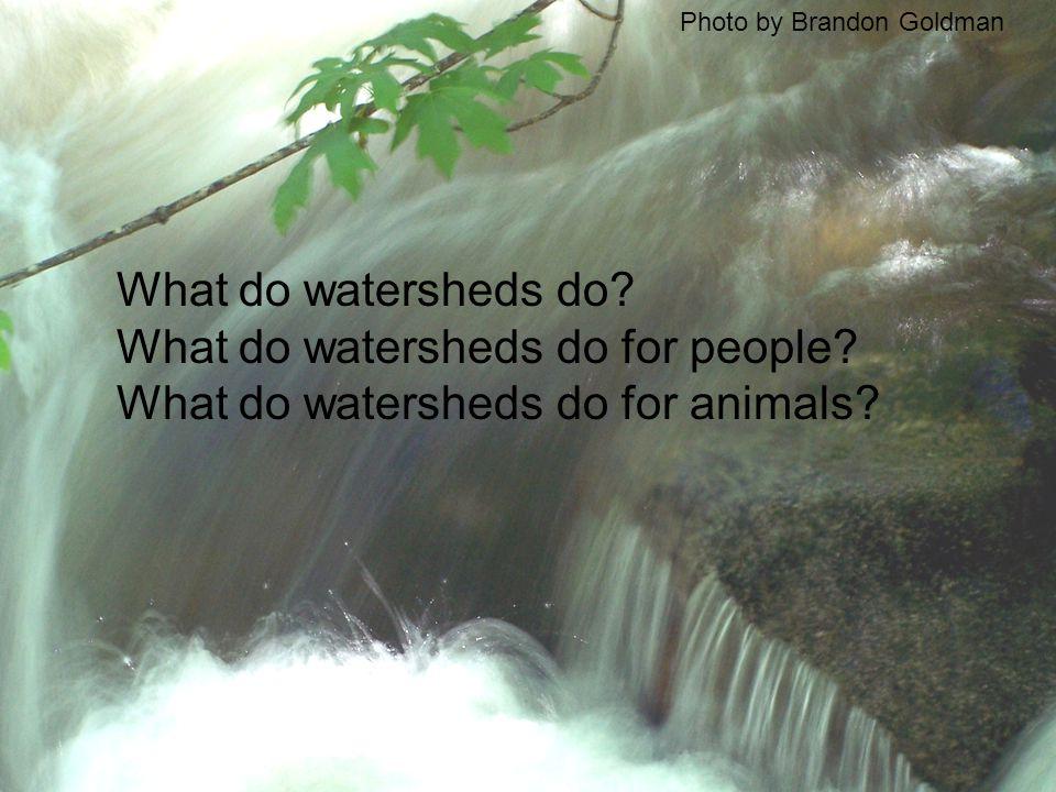 What do watersheds do. What do watersheds do for people.