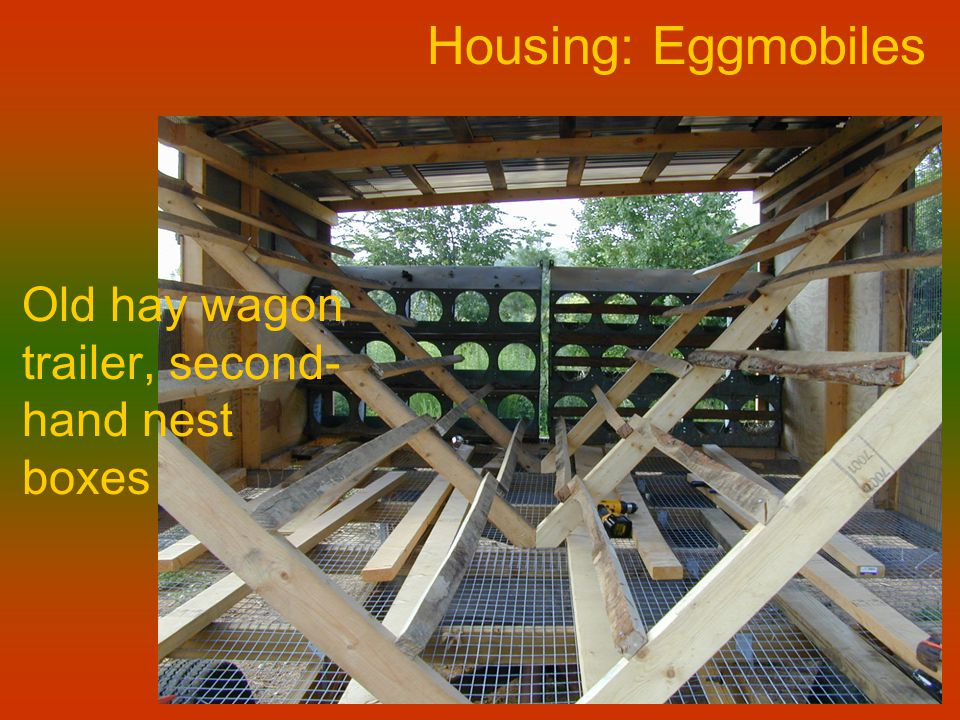 Housing: Eggmobiles Old hay wagon trailer, second- hand nest boxes