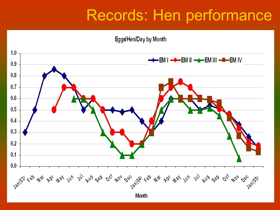 Records: Hen performance