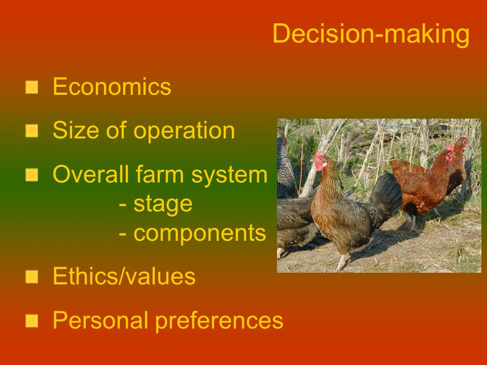Decision-making Economics Size of operation Overall farm system - stage - components Ethics/values Personal preferences