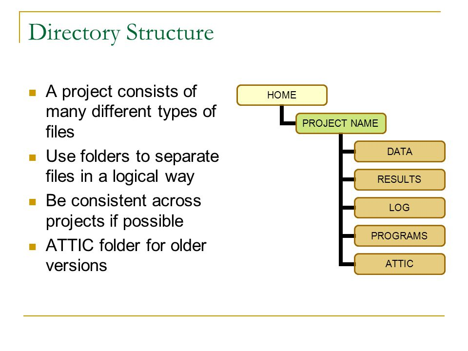 Directory Structure A project consists of many different types of files Use folders to separate files in a logical way Be consistent across projects if possible ATTIC folder for older versions HOME PROJECT NAME DATA RESULTS LOG PROGRAMS ATTIC