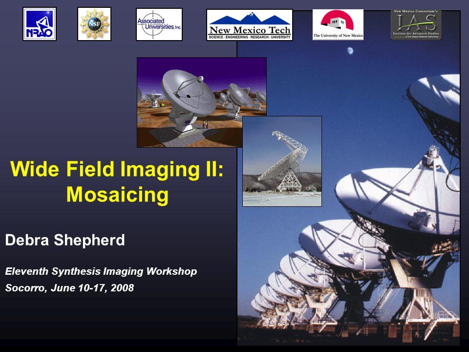 Eleventh Synthesis Imaging Workshop Socorro, June 10-17, 2008 Wide Field Imaging II: Mosaicing Debra Shepherd