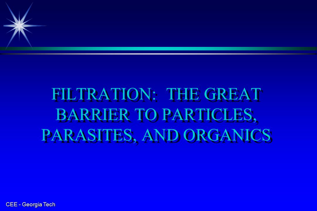 CEE - Georgia Tech FILTRATION: THE GREAT BARRIER TO PARTICLES, PARASITES, AND ORGANICS