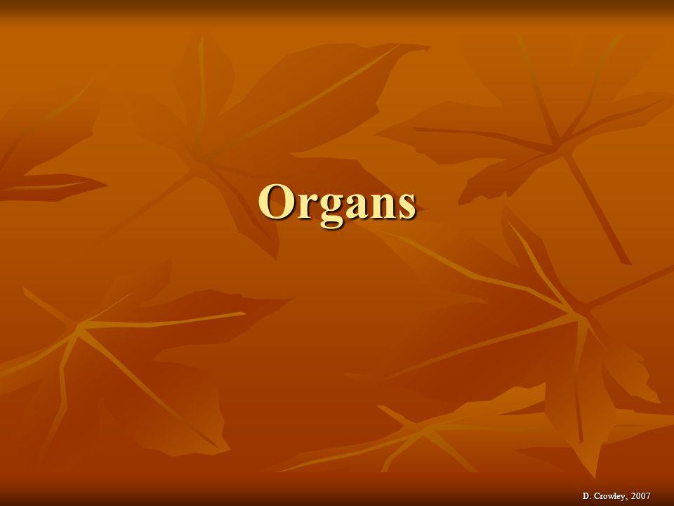Organs D. Crowley, 2007