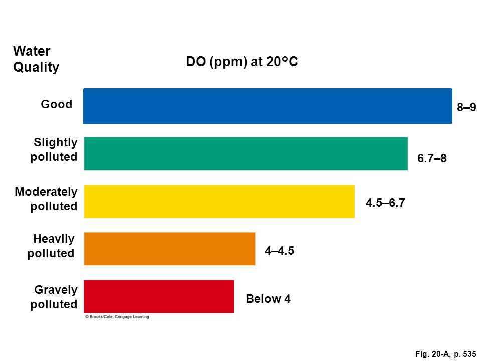 Fig. 20-A, p. 535 Good 8–9 Water Quality DO (ppm) at 20°C Slightly polluted 6.7–8 Moderately polluted 4.5–6.7 Heavily polluted 4–4.5 Gravely polluted