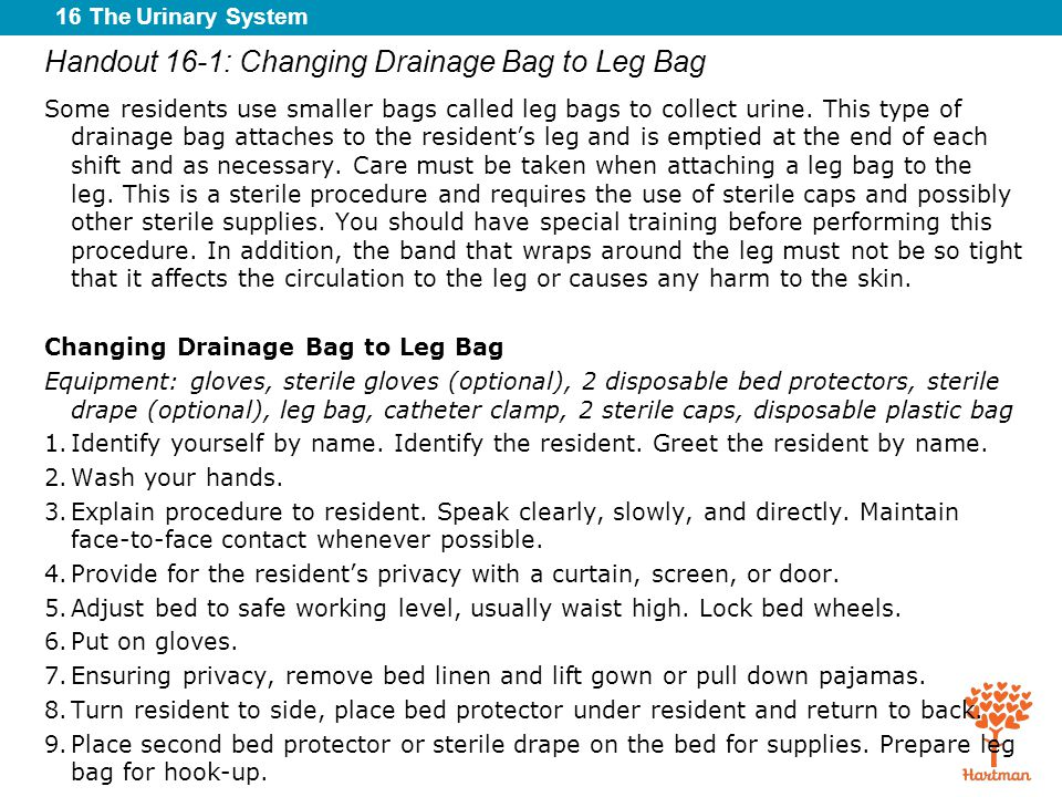 16 The Urinary System Handout 16-1: Changing Drainage Bag to Leg Bag Some residents use smaller bags called leg bags to collect urine. This type of dr