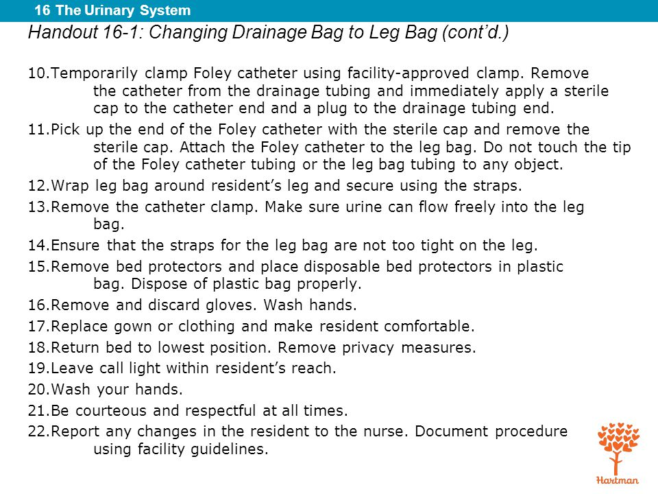 16 The Urinary System Handout 16-1: Changing Drainage Bag to Leg Bag (cont'd.) 10.Temporarily clamp Foley catheter using facility-approved clamp. Remo