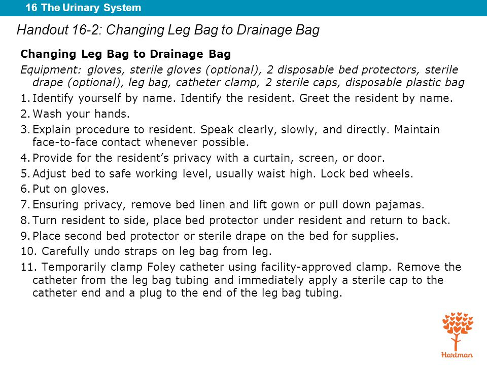16 The Urinary System Handout 16-2: Changing Leg Bag to Drainage Bag Changing Leg Bag to Drainage Bag Equipment: gloves, sterile gloves (optional), 2