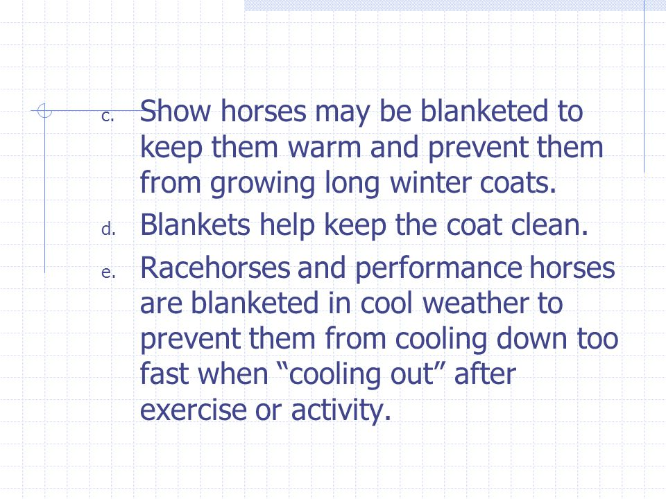 c. Show horses may be blanketed to keep them warm and prevent them from growing long winter coats. d. Blankets help keep the coat clean. e. Racehorses