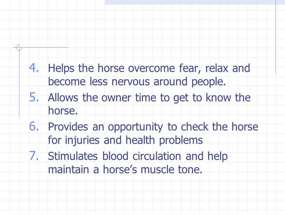 4. Helps the horse overcome fear, relax and become less nervous around people. 5. Allows the owner time to get to know the horse. 6. Provides an oppor