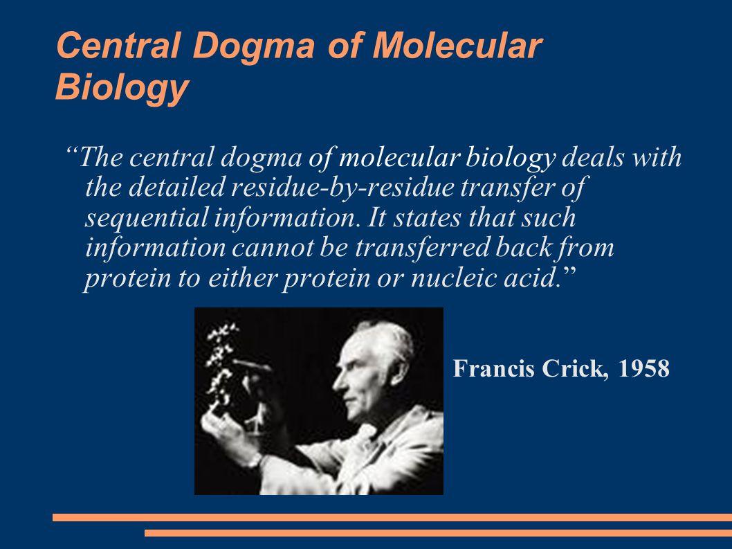 DNA Replication: