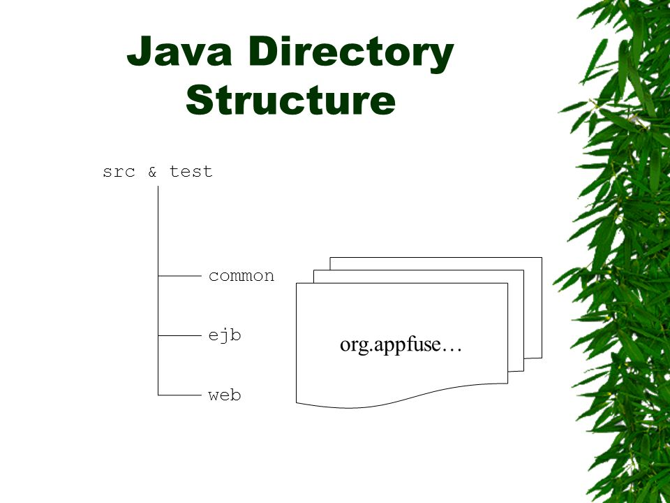 Java Directory Structure src & test common ejb web org.appfuse…