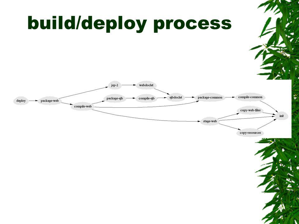 build/deploy process