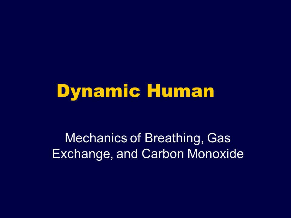Dynamic Human Mechanics of Breathing, Gas Exchange, and Carbon Monoxide
