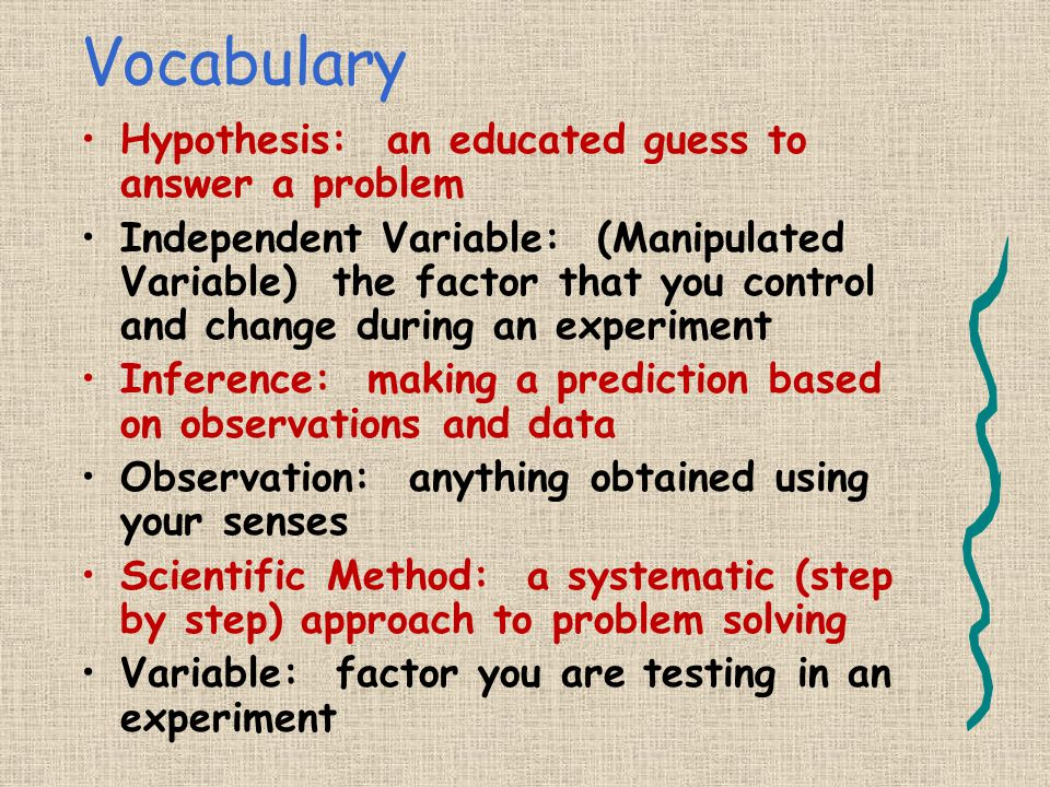 Vocabulary Conclusion: summary of results at the end of an experiment Constants: factors that are kept the same during an experiment Control: the expe