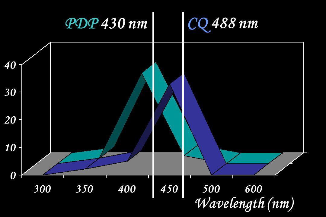 CQ 488 nm PDP 430 nm Wavelength (nm)