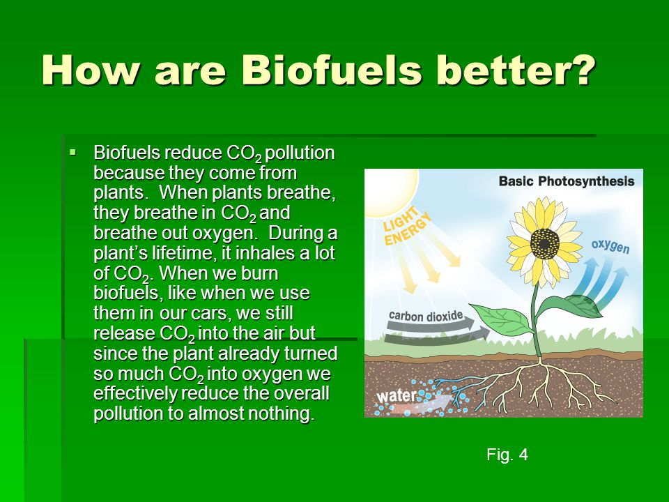 How are Biofuels better.  Biofuels reduce CO 2 pollution because they come from plants.
