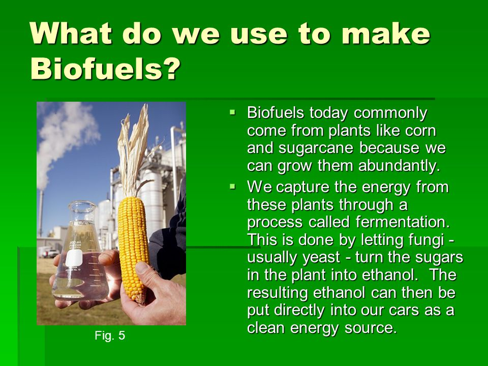What do we use to make Biofuels.