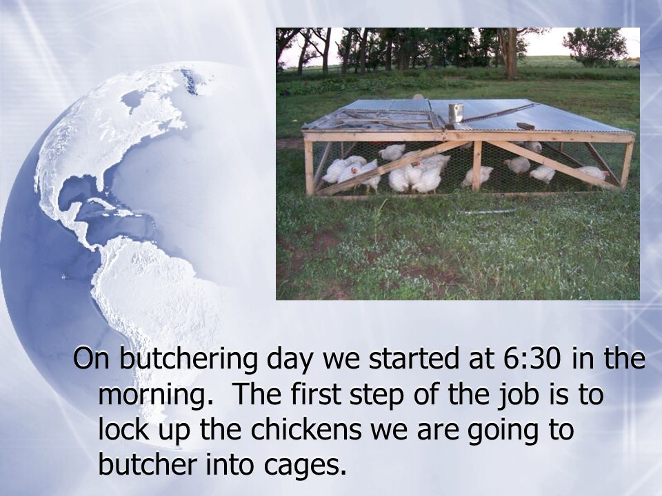 On butchering day we started at 6:30 in the morning.