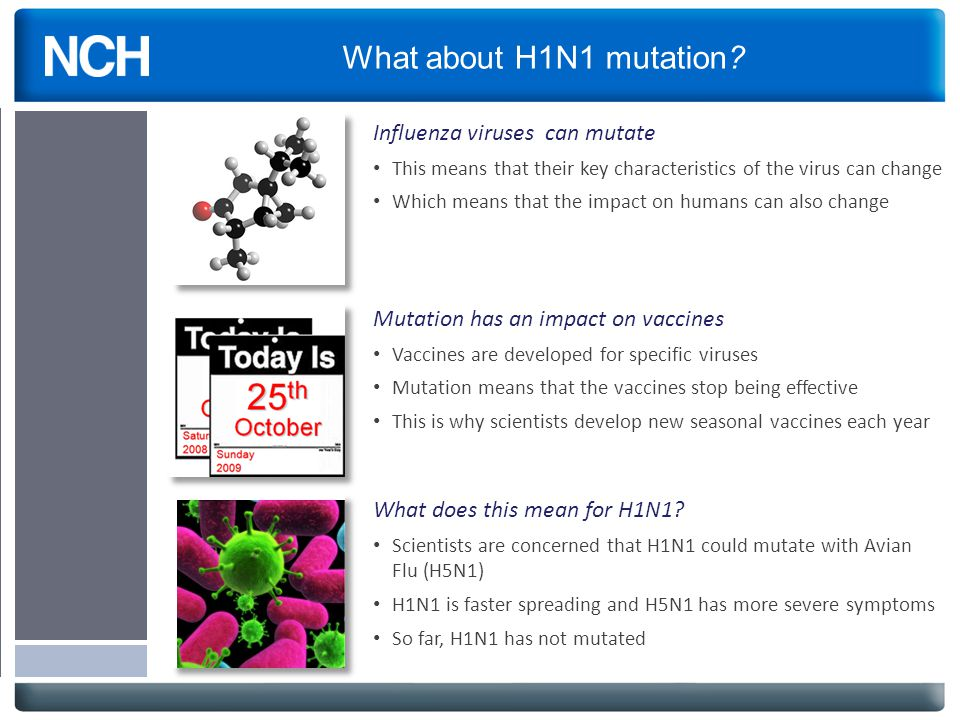 What about H1N1 mutation? Influenza viruses can mutate This means that their key characteristics of the virus can change Which means that the impact o