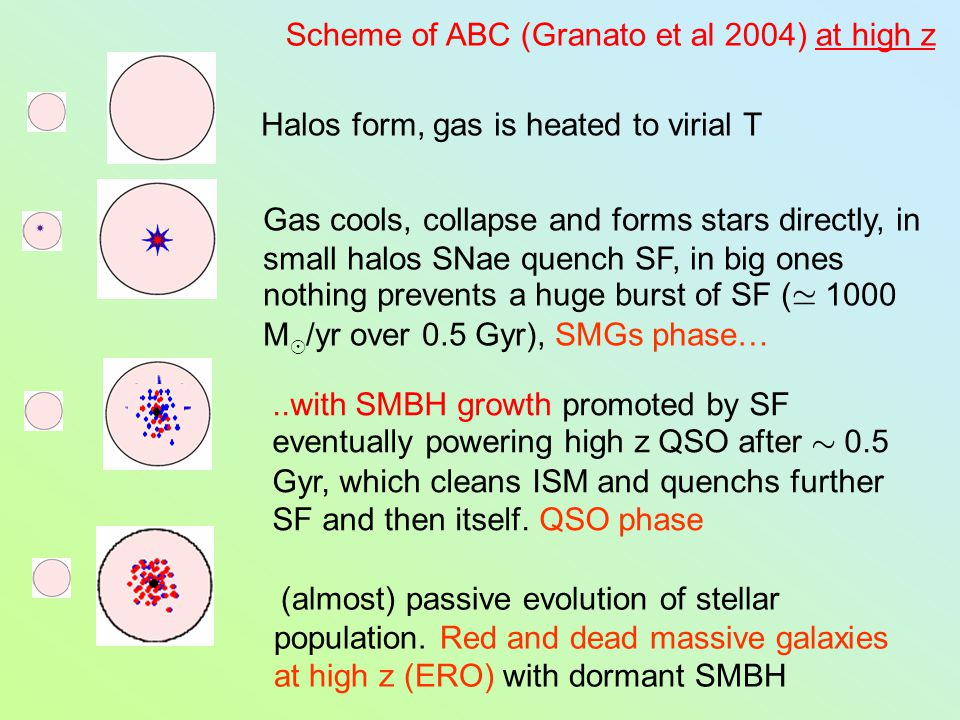 Halos form, gas is heated to virial T Scheme of ABC (Granato et al 2004) at high z Gas cools, collapse and forms stars directly, in small halos SNae quench SF, in big ones nothing prevents a huge burst of SF ( 1000 M ¯ /yr over 0.5 Gyr), SMGs phase… (almost) passive evolution of stellar population.