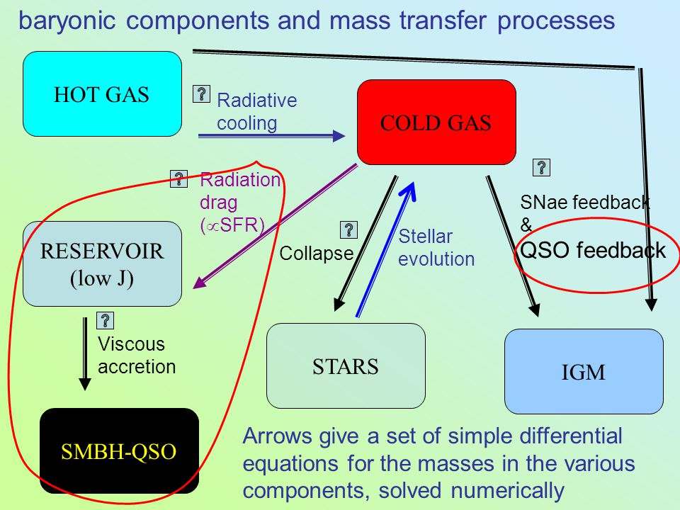 HOT GAS COLD GAS RESERVOIR (low J) STARS IGM SMBH-QSO SNae feedback & QSO feedback Radiative cooling Radiation drag (  SFR) Viscous accretion Collapse baryonic components and mass transfer processes Stellar evolution Arrows give a set of simple differential equations for the masses in the various components, solved numerically