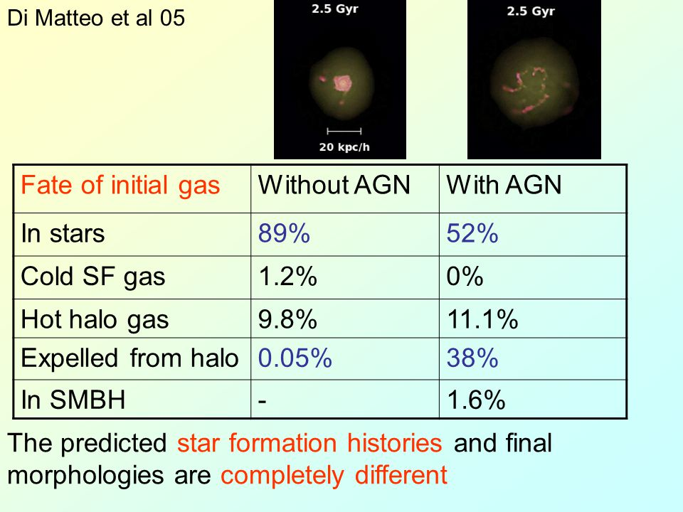 Fate of initial gasWithout AGNWith AGN In stars89%52% Cold SF gas1.2%0% Hot halo gas9.8%11.1% Expelled from halo0.05%38% In SMBH-1.6% The predicted st