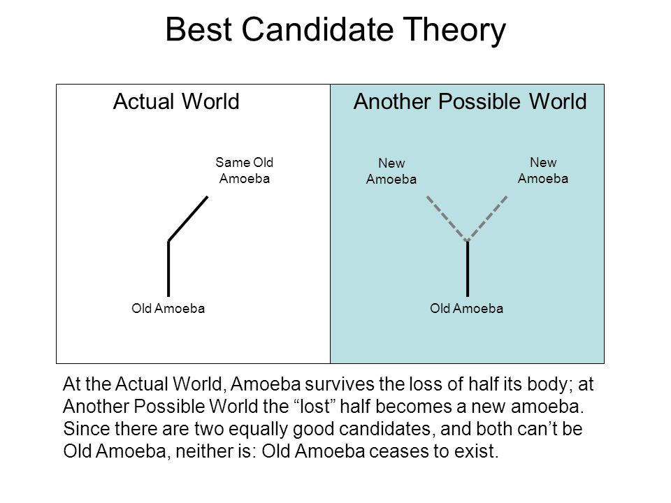 Best Candidate Theory Actual WorldAnother Possible World At the Actual World, Amoeba survives the loss of half its body; at Another Possible World the lost half becomes a new amoeba.