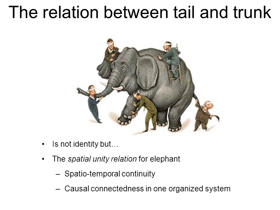 The relation between tail and trunk Is not identity but… The spatial unity relation for elephant –Spatio-temporal continuity –Causal connectedness in one organized system