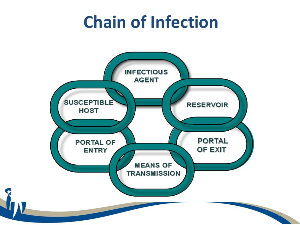 12 Chain of Infection