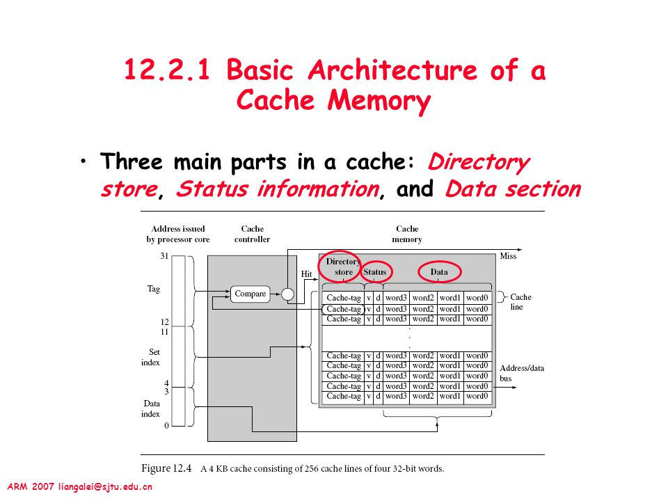 ARM 2007 liangalei@sjtu.edu.cn 12.2.1 Basic Architecture of a Cache Memory Three main parts in a cache: Directory store, Status information, and Data section