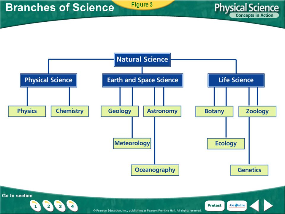 Go to section Branches of Science Figure 3