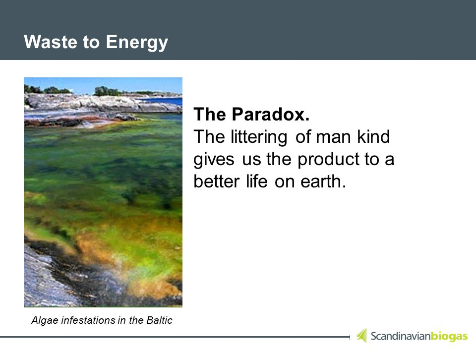 Waste to Energy The Paradox.