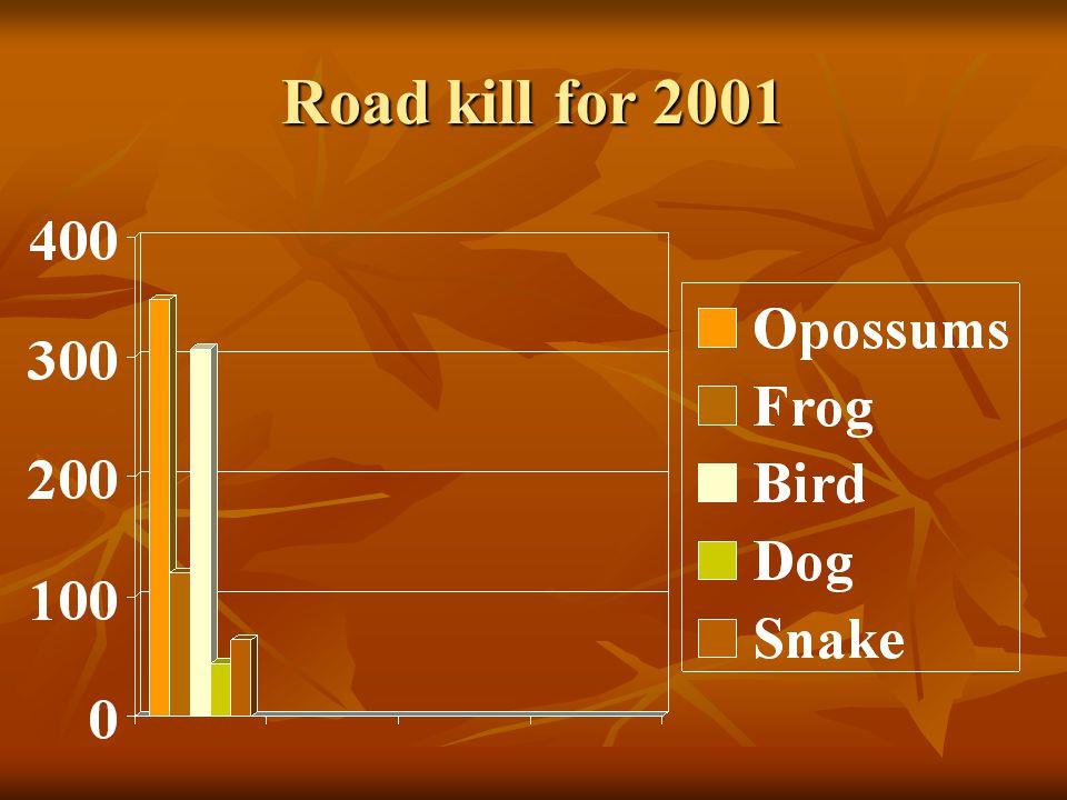 Road kill for 2001
