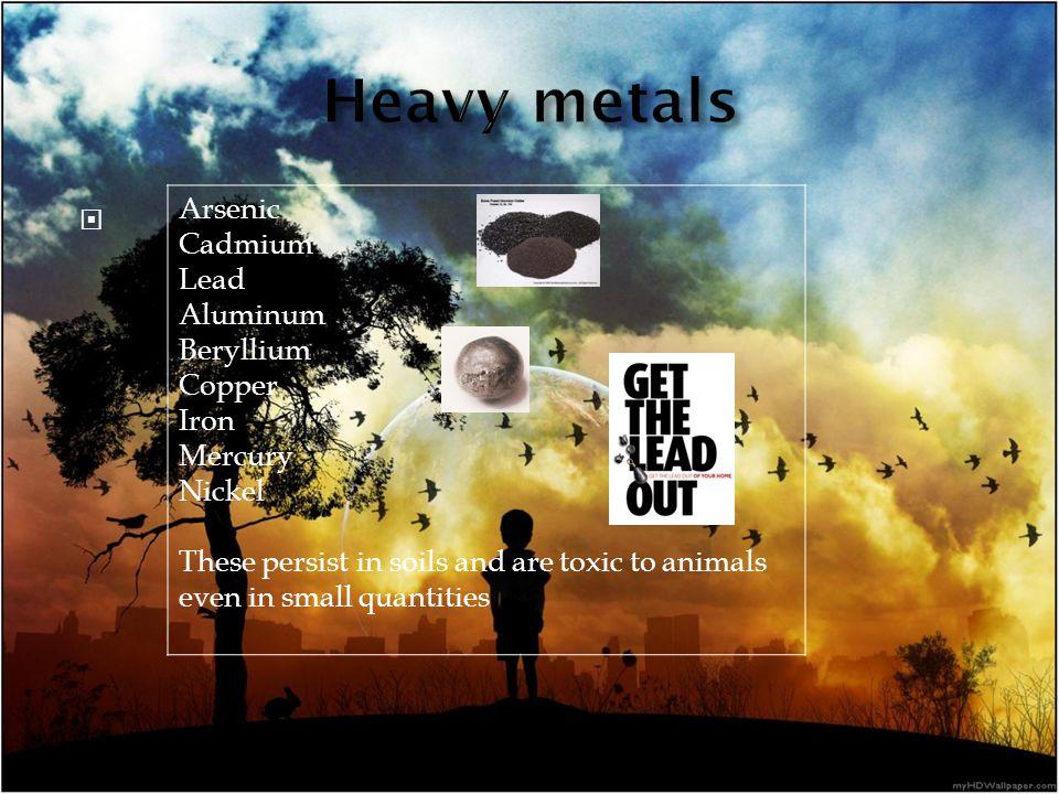 Arsenic Cadmium Lead Aluminum Beryllium Copper Iron Mercury Nickel These persist in soils and are toxic to animals even in small quantities