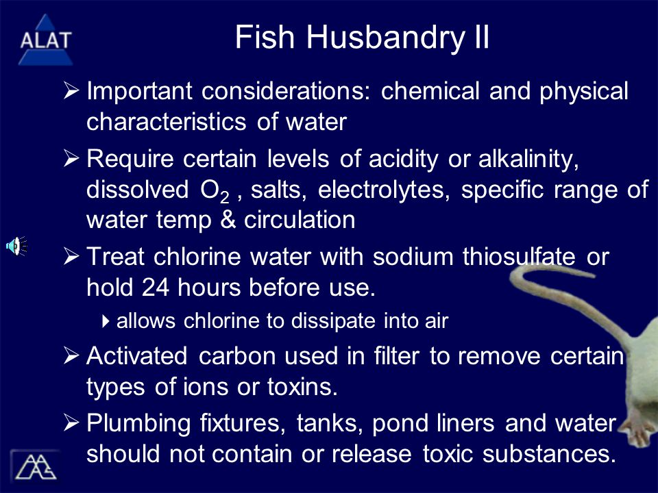 Fish Husbandry II  Important considerations: chemical and physical characteristics of water  Require certain levels of acidity or alkalinity, dissolved O 2, salts, electrolytes, specific range of water temp & circulation  Treat chlorine water with sodium thiosulfate or hold 24 hours before use.