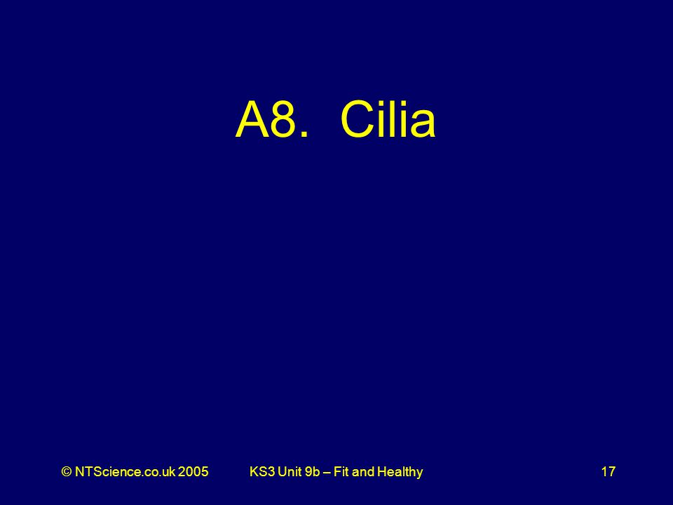 © NTScience.co.uk 2005KS3 Unit 9b – Fit and Healthy17 A8. Cilia