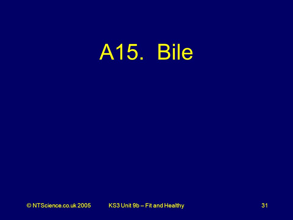 © NTScience.co.uk 2005KS3 Unit 9b – Fit and Healthy31 A15. Bile