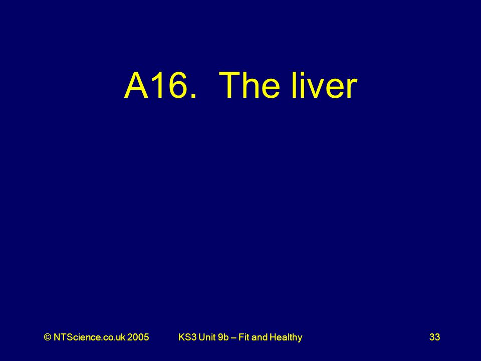 © NTScience.co.uk 2005KS3 Unit 9b – Fit and Healthy33 A16. The liver
