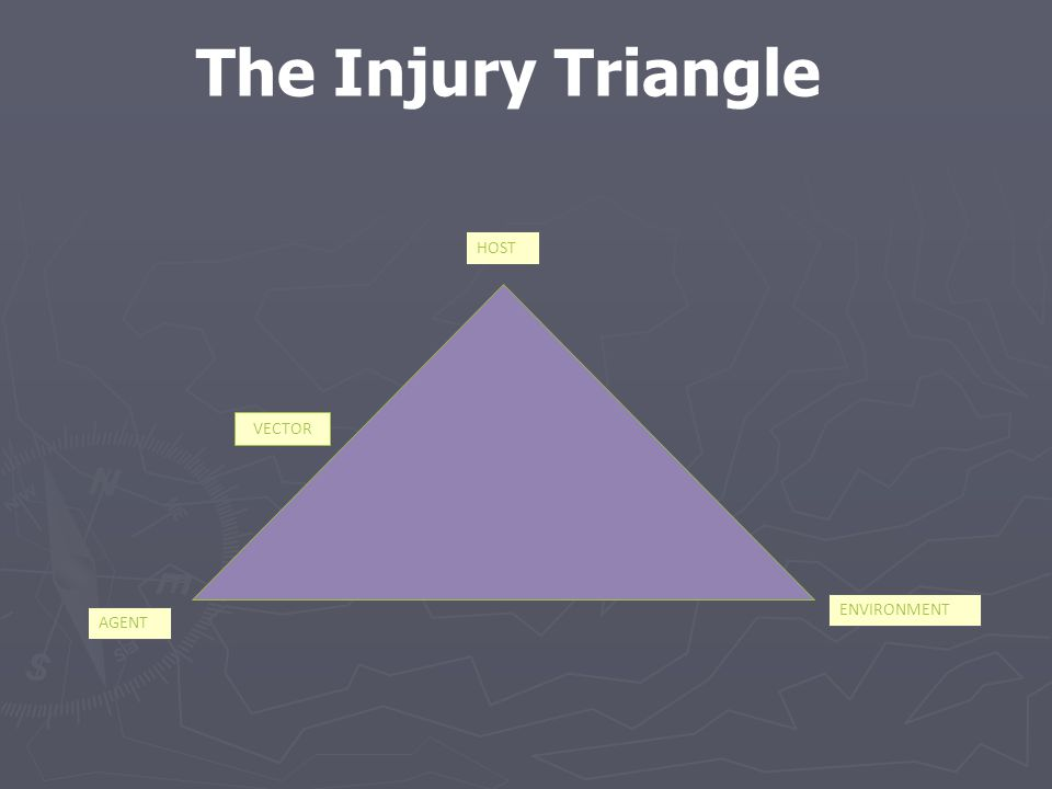 The Injury Triangle ENVIRONMENT AGENT HOST VECTOR