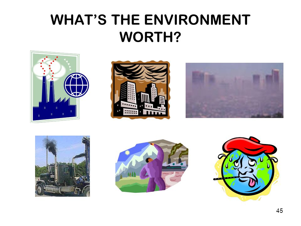 45 WHAT'S THE ENVIRONMENT WORTH