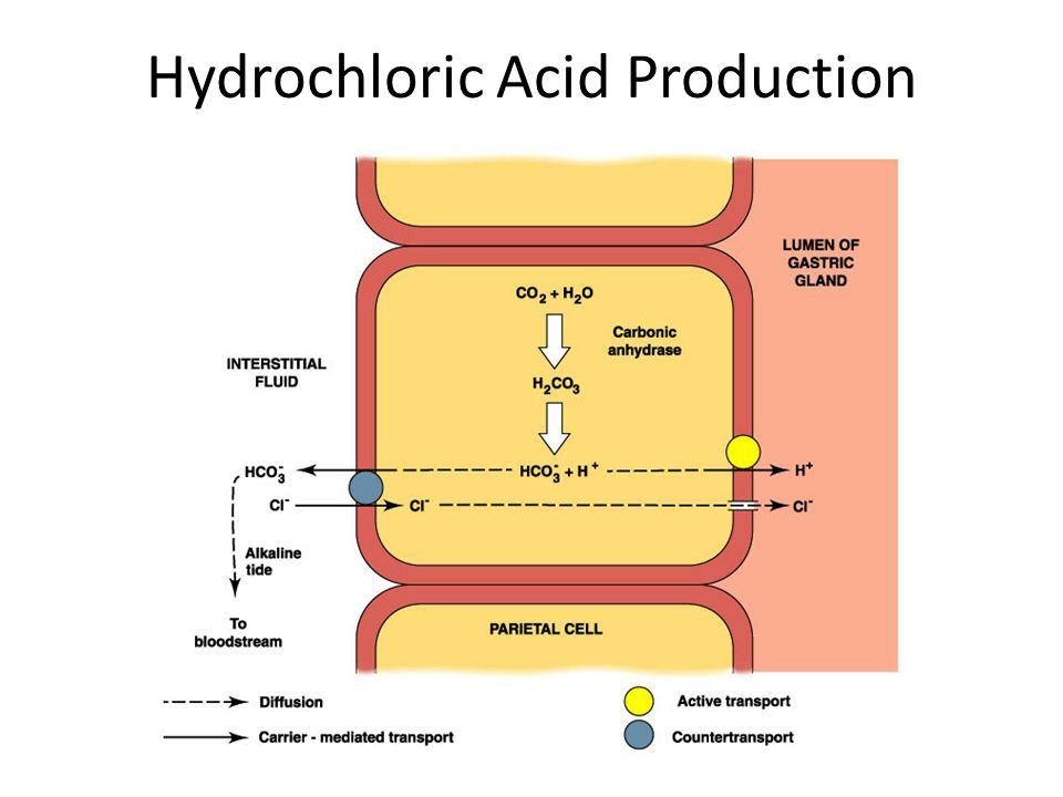 Hydrochloric Acid Production